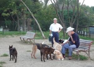2009_0916_173550 atsumaru
