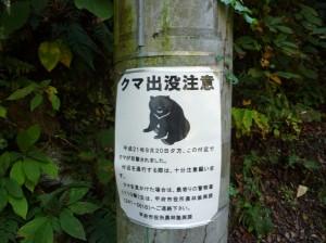 2009_1029_105552 kuma_chuui