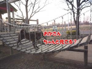 2013_0108_160937 tsuribashi03