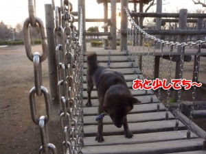 2013_0108_160953 tsuribashi04