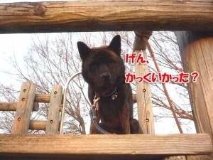 2013_0108_161108 oyatsu