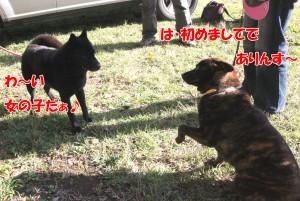 2013_1013_082747 riku_mego01