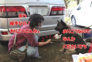 2013_1013_094509 kaimama_gen