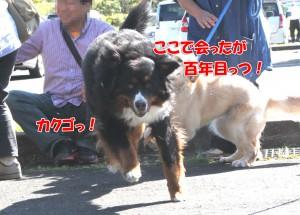 2014_0928_100115