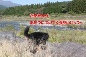 2014_0928_103752