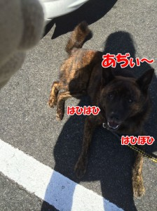 2014_0928_114527(1)