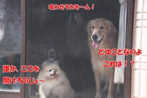 2014_0928_135041