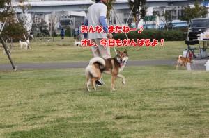 2014_1012_093619