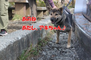 2014_1027_102518(1)