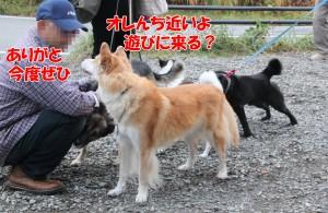 2014_1027_103146